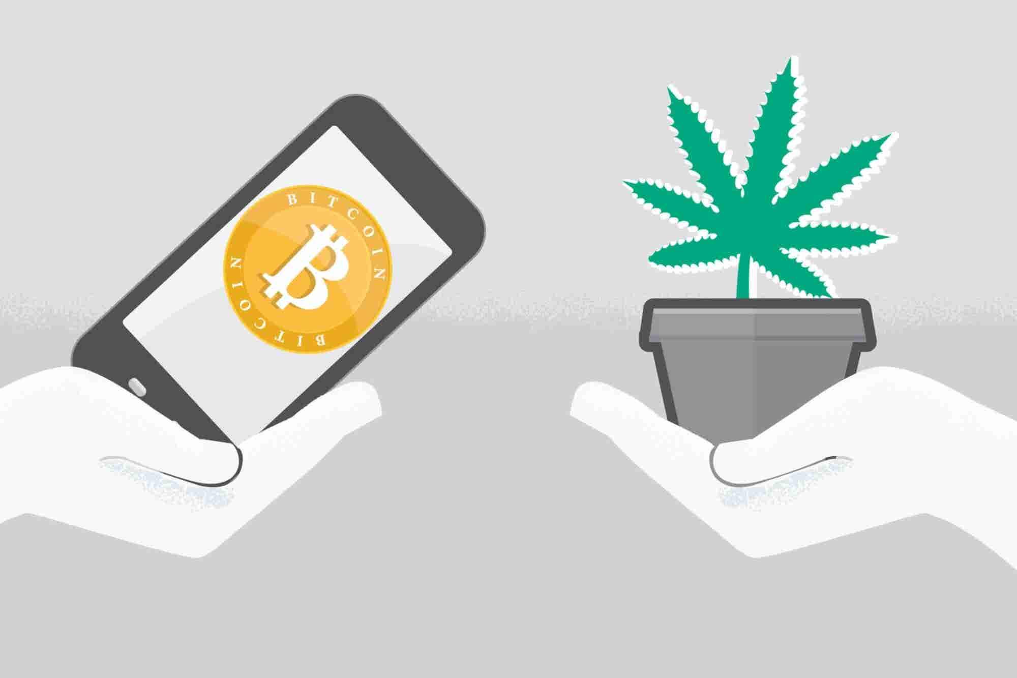 3 Ways Blockchain Could Help Solve the Cannabis Business's Biggest Roadblocks