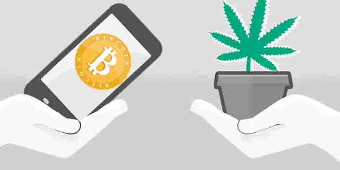 3 Ways Blockchain Could Help Solve the Cannabis Business's Biggest Roadblocks