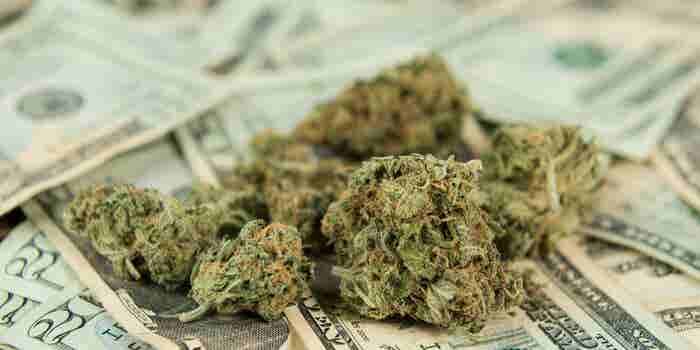 5 Things You Absolutely Need to Know About Cannabis Taxes