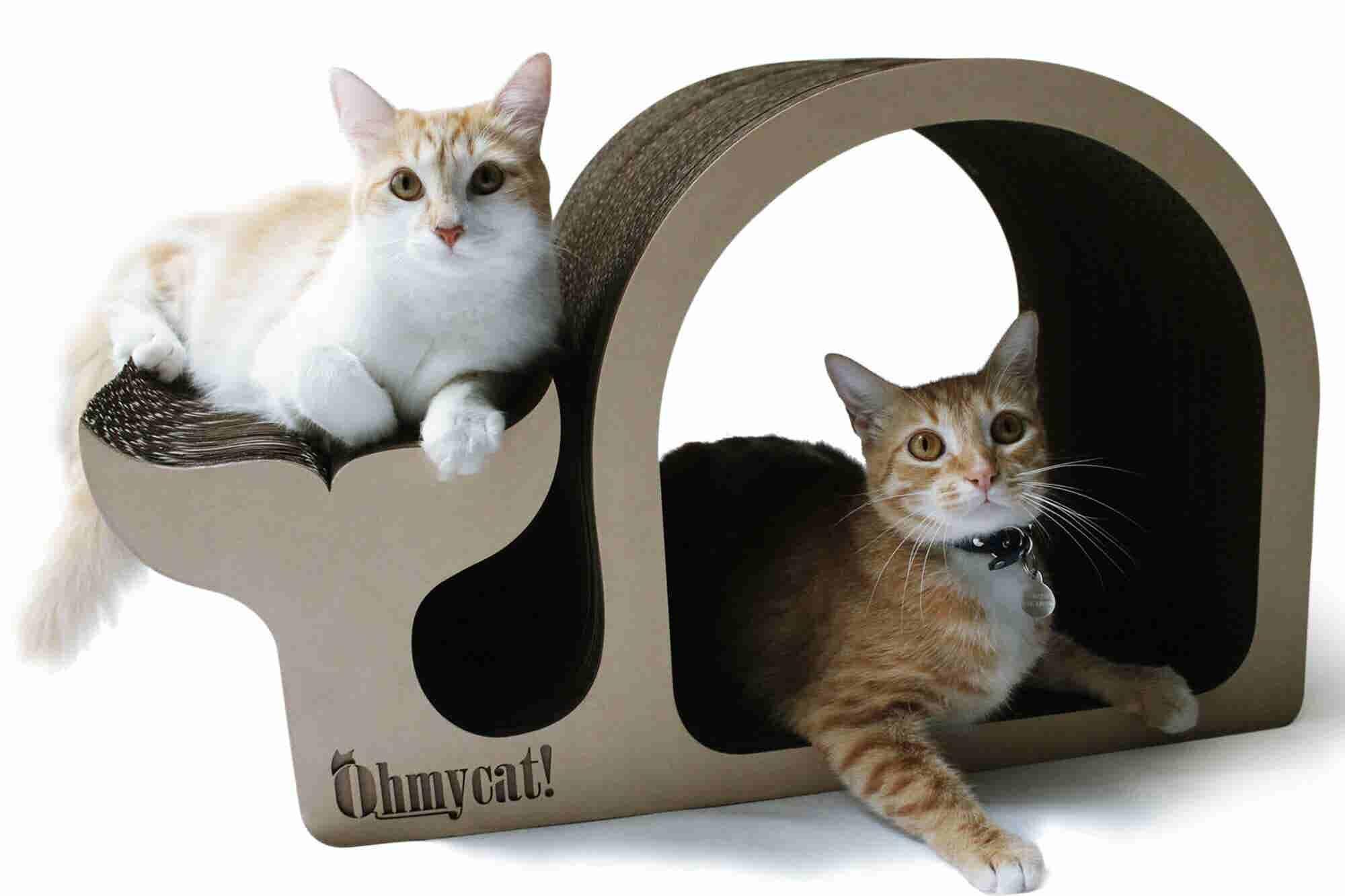 Estos son los muebles que aman los gatos y los tiburones de Shark Tank...