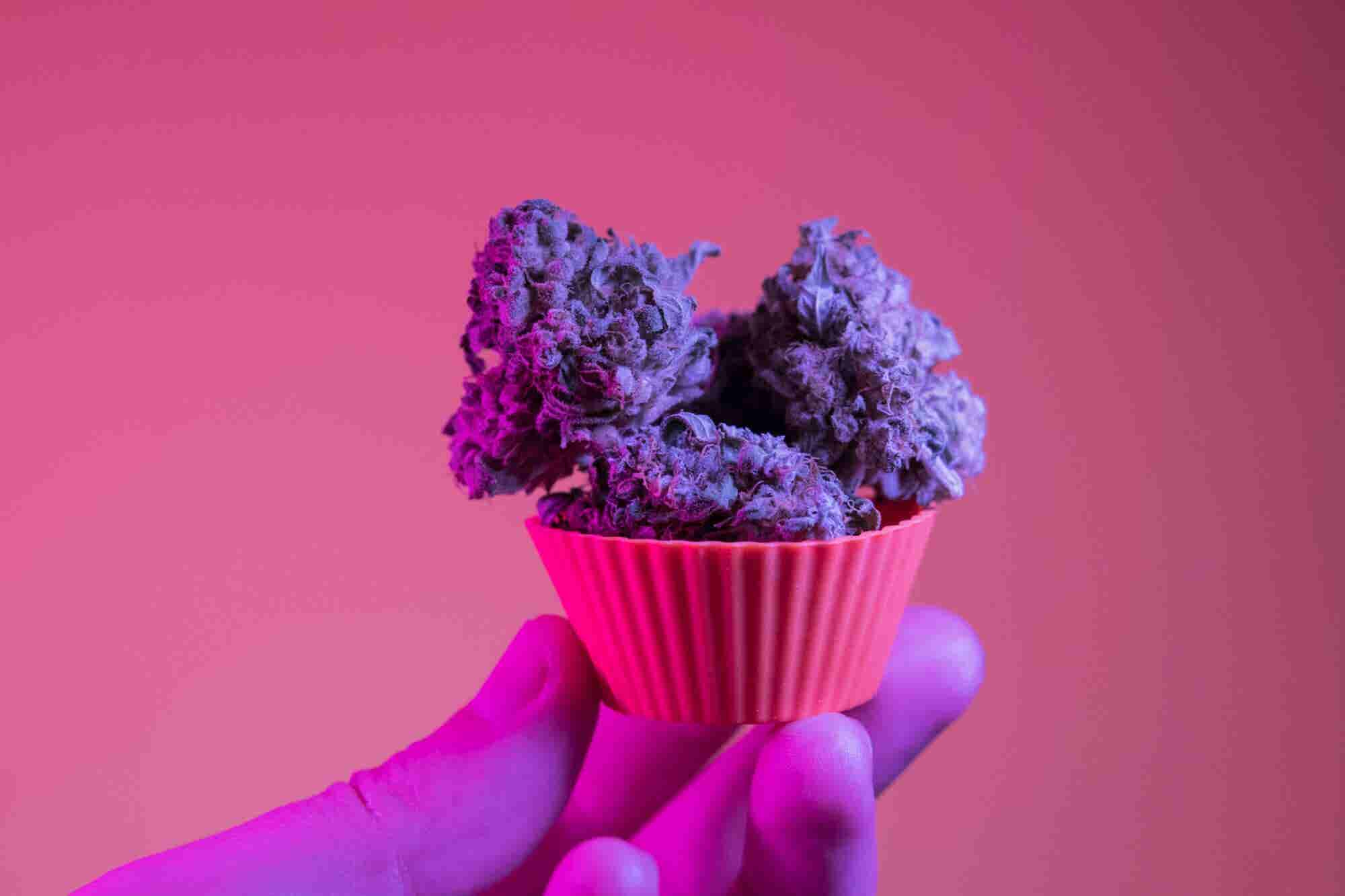 3 Ways Cannabis Brands Can Make a Powerful First Impression