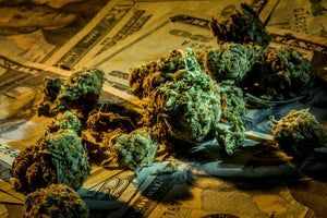 Cannabis Companies Likely to Raise More in 2018 Than the Last 3 Years Combined
