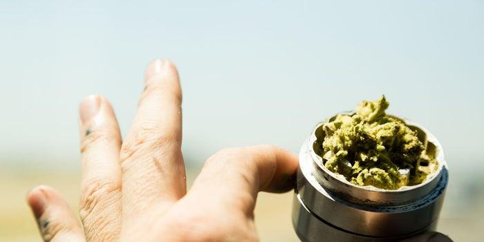 5 Characteristics Essential for Success as a Cannabis Entrepreneur