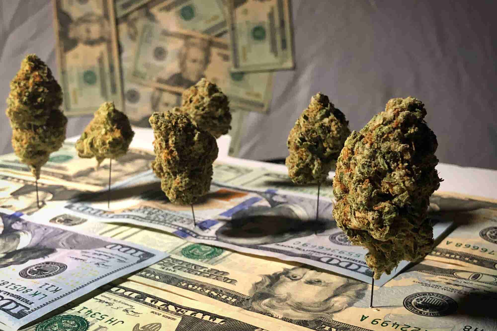 Marijuana Is a $794 Million Windfall for the States That Have Legalized Adult Use