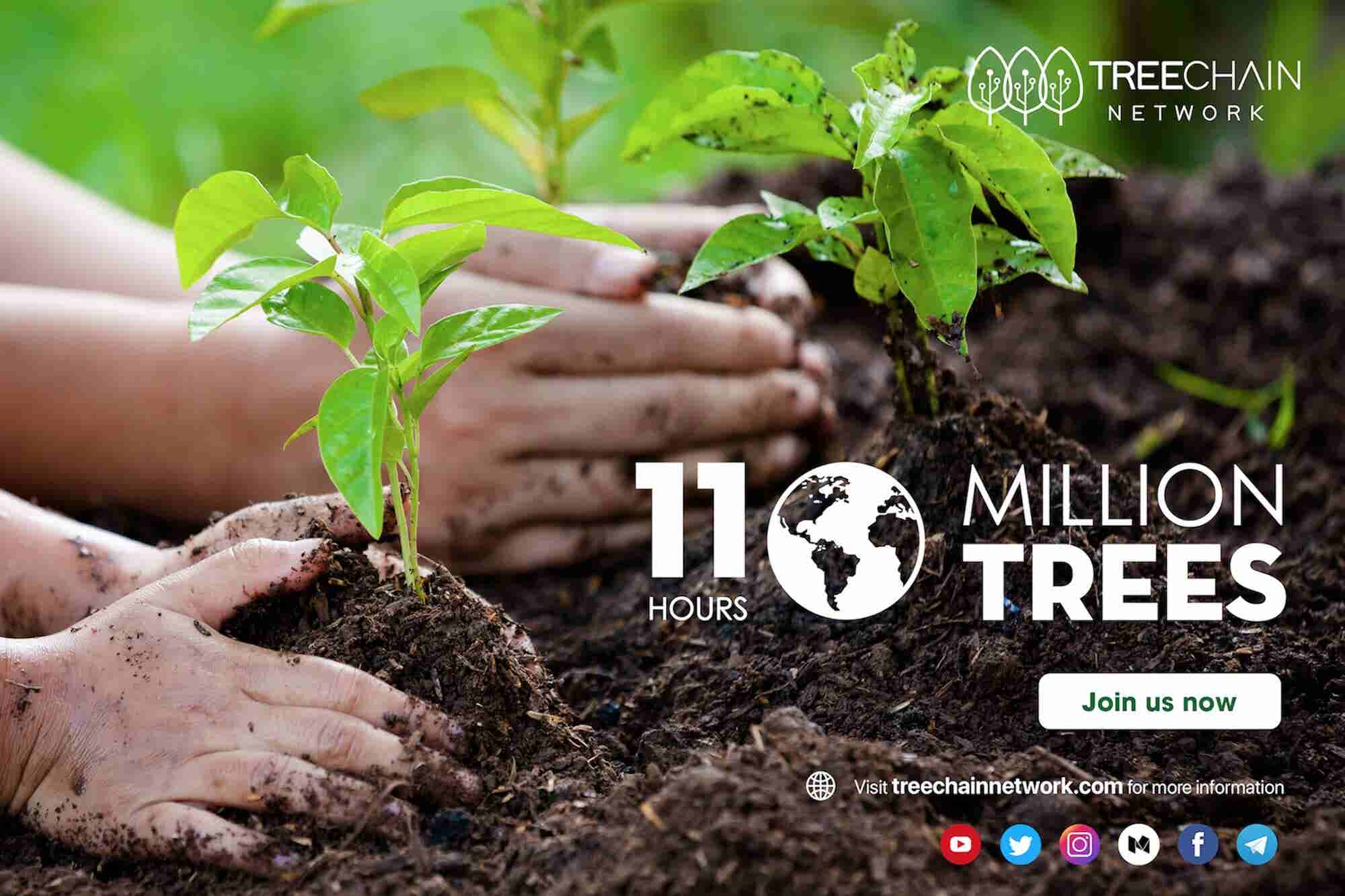 TreeChain Network - Transforming Global Tree Cover through Blockchain Technology