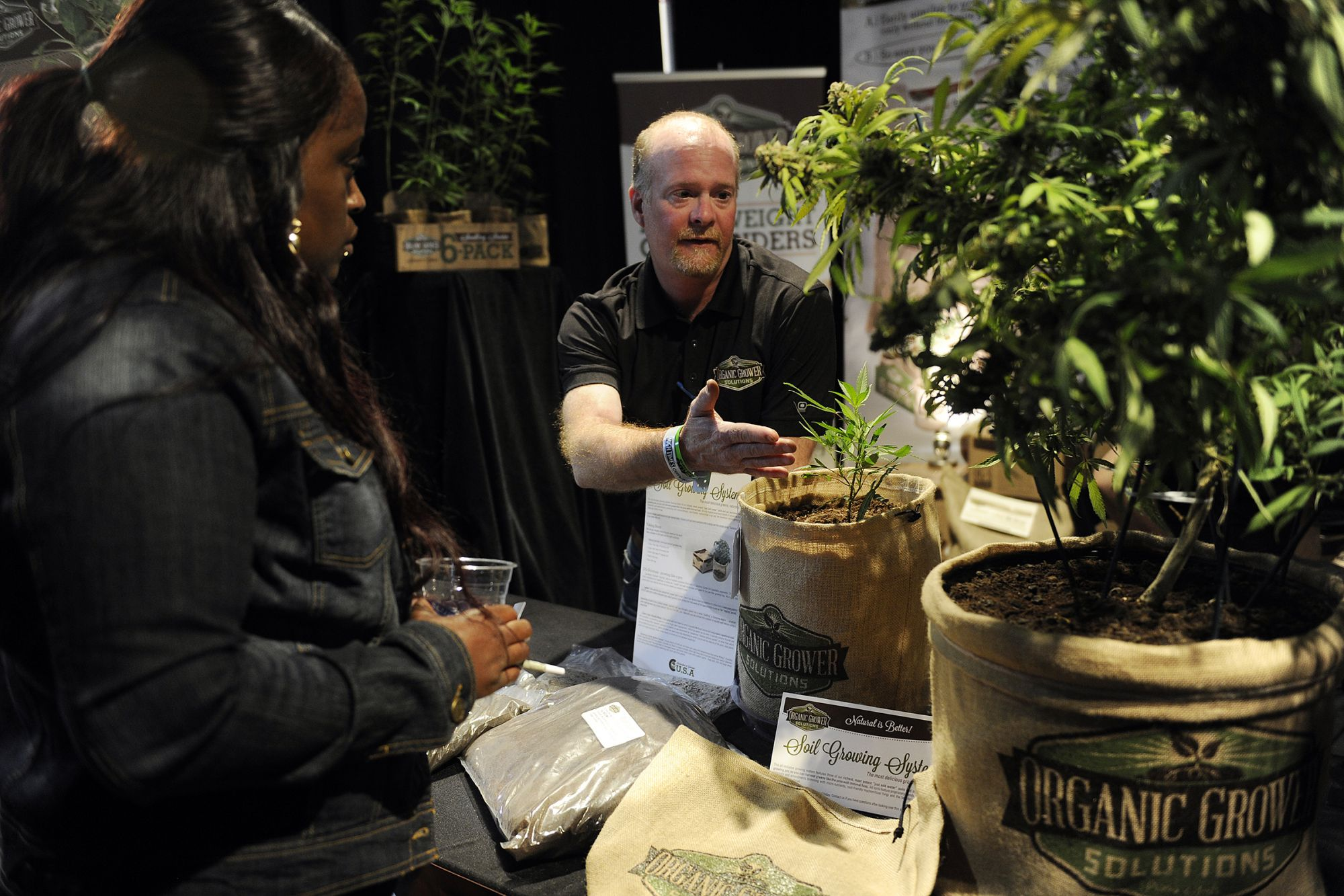 Some Tips for East Coast Cannabis Entrepreneurs From Colorado's Industry Leaders