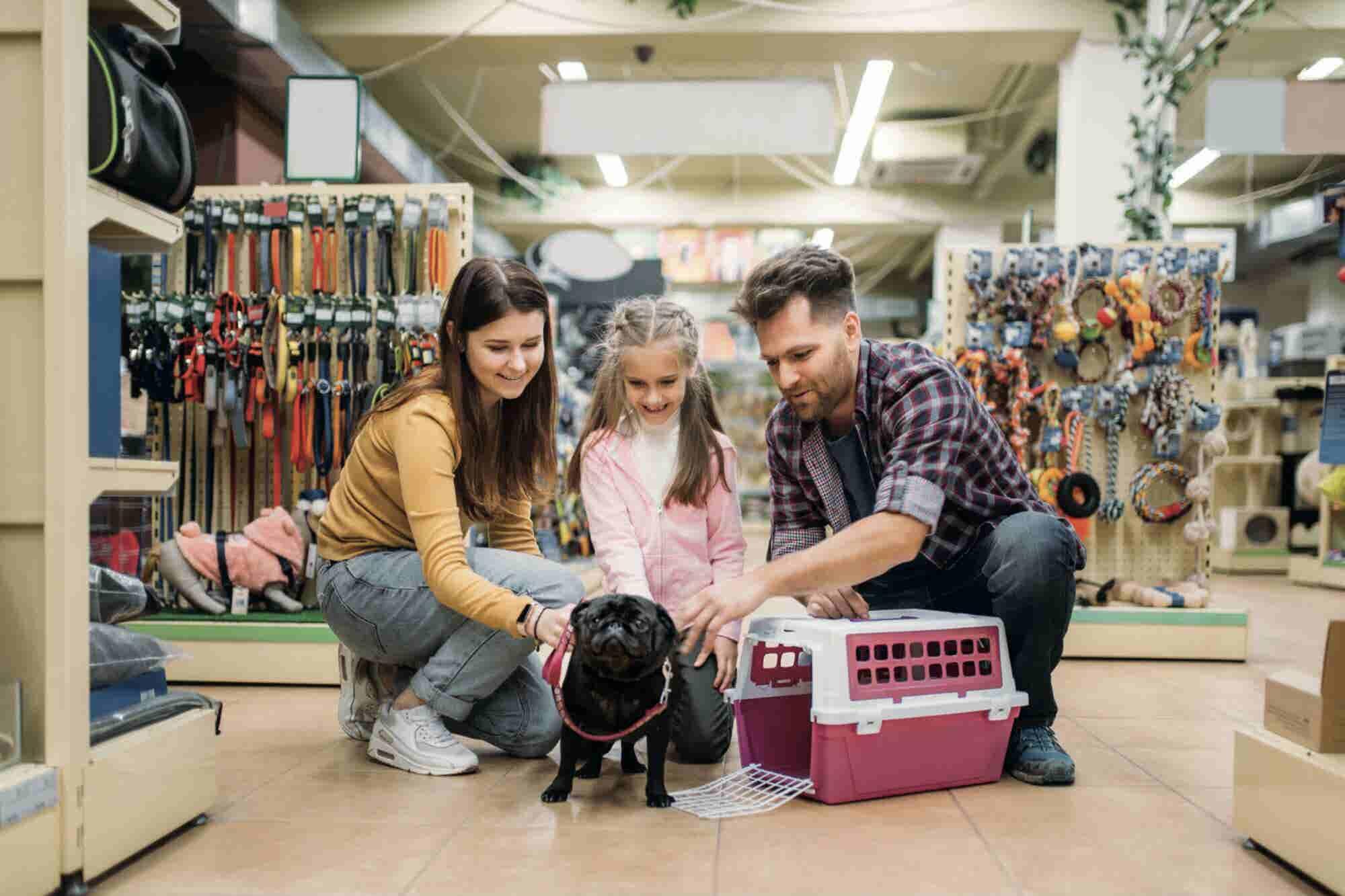 Lo que necesitas saber para abrir una tienda 'todo para tu perro'