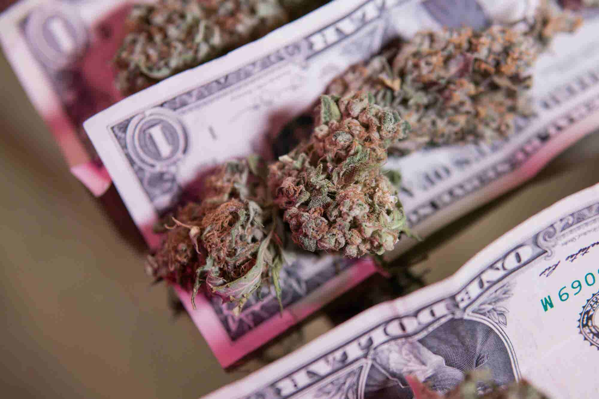 Don't Invest In Legal Cannabis Until You've Read These 5 Tips