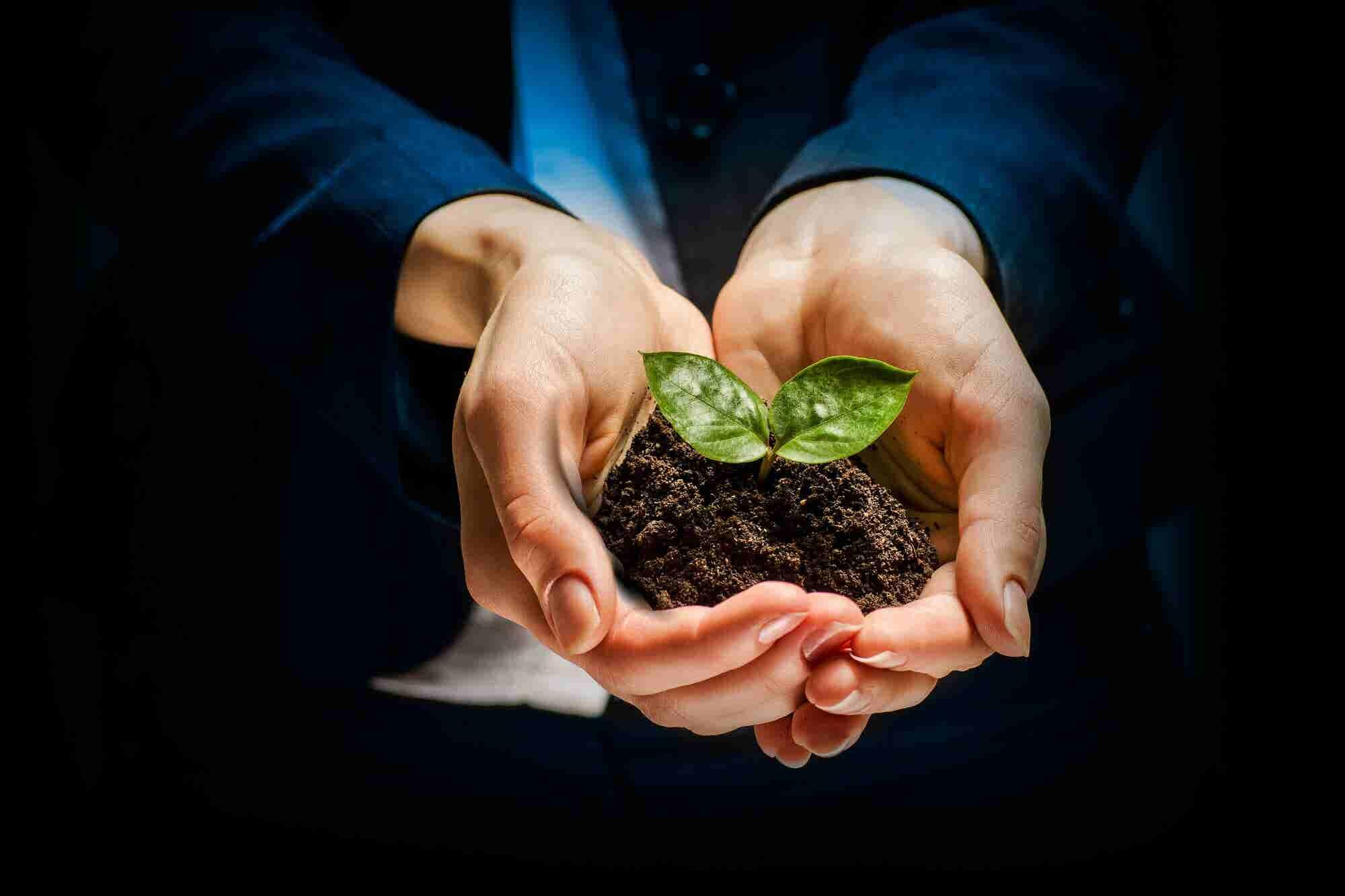 Citibanamex Compromiso Social reconoce el emprendimiento de alto impac...