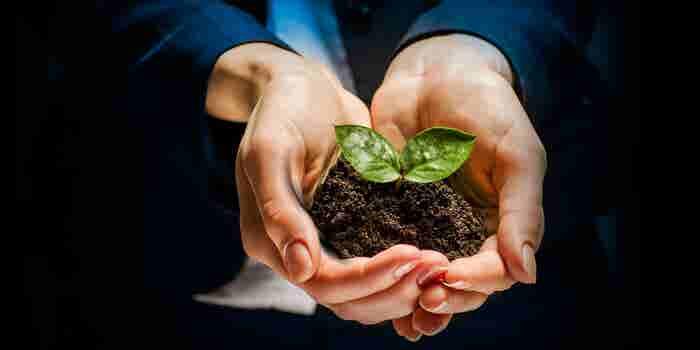 Citibanamex Compromiso Social reconoce el emprendimiento de alto impacto social