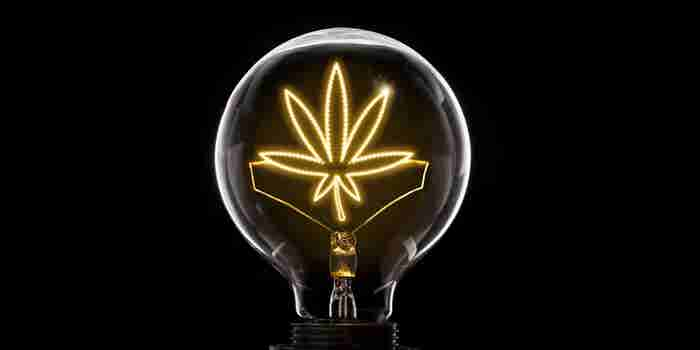 The Evolving Cannabis Market Offers Limitless Opportunities