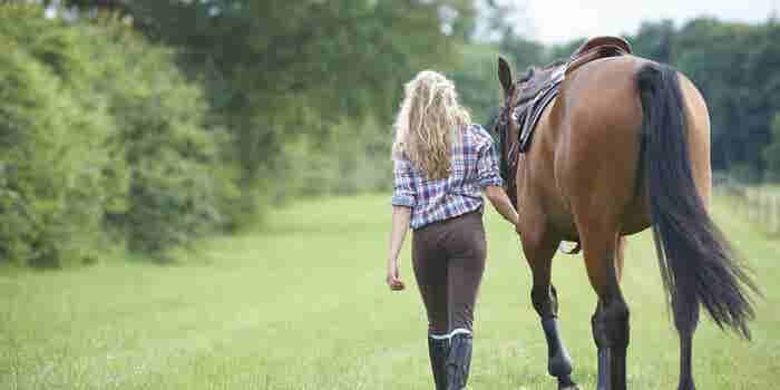 3 Leadership Lessons I Learned Training Horses