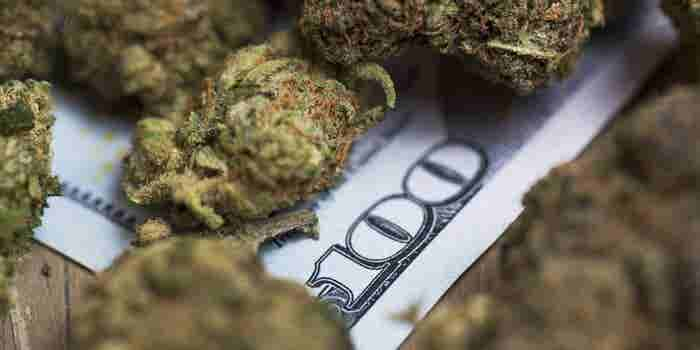6 Things to Keep in Mind When Fundraising for Cannabis
