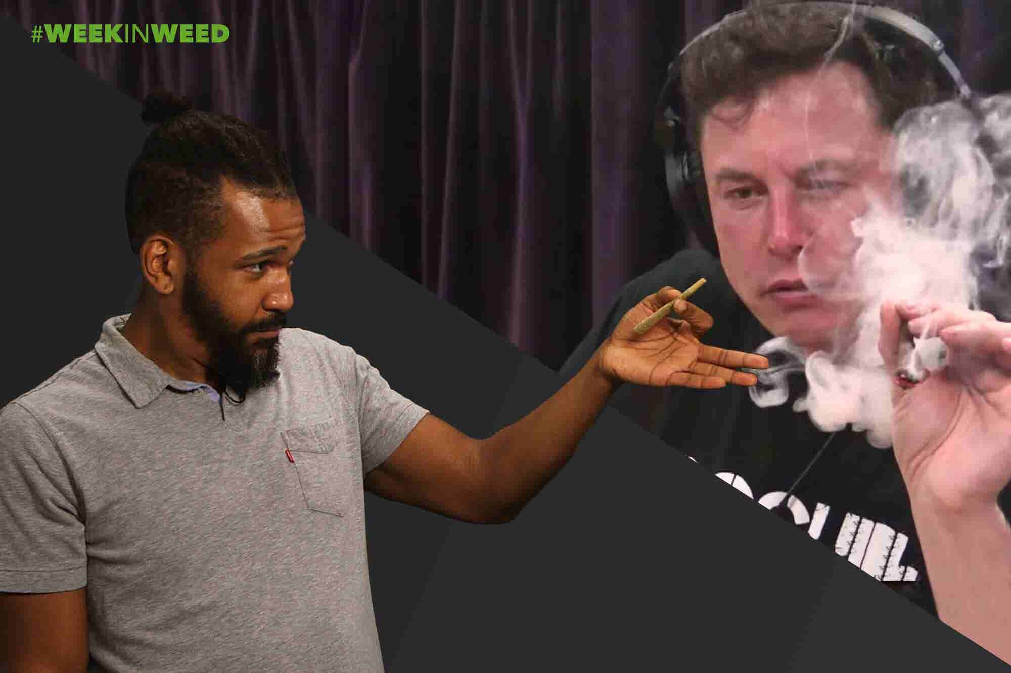 This Week in Weed: Elon Musk Smokes Pot!
