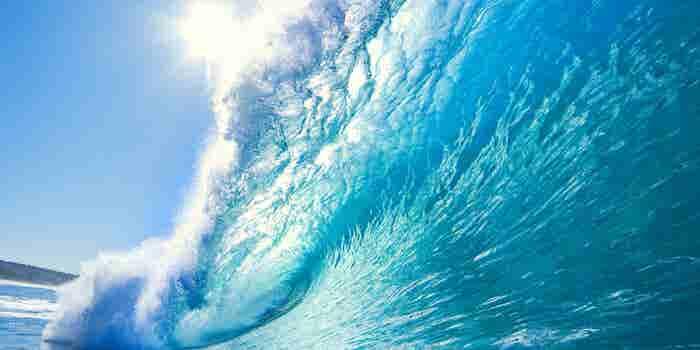 La estrategia del 'océano azul' para ganarle a la competencia