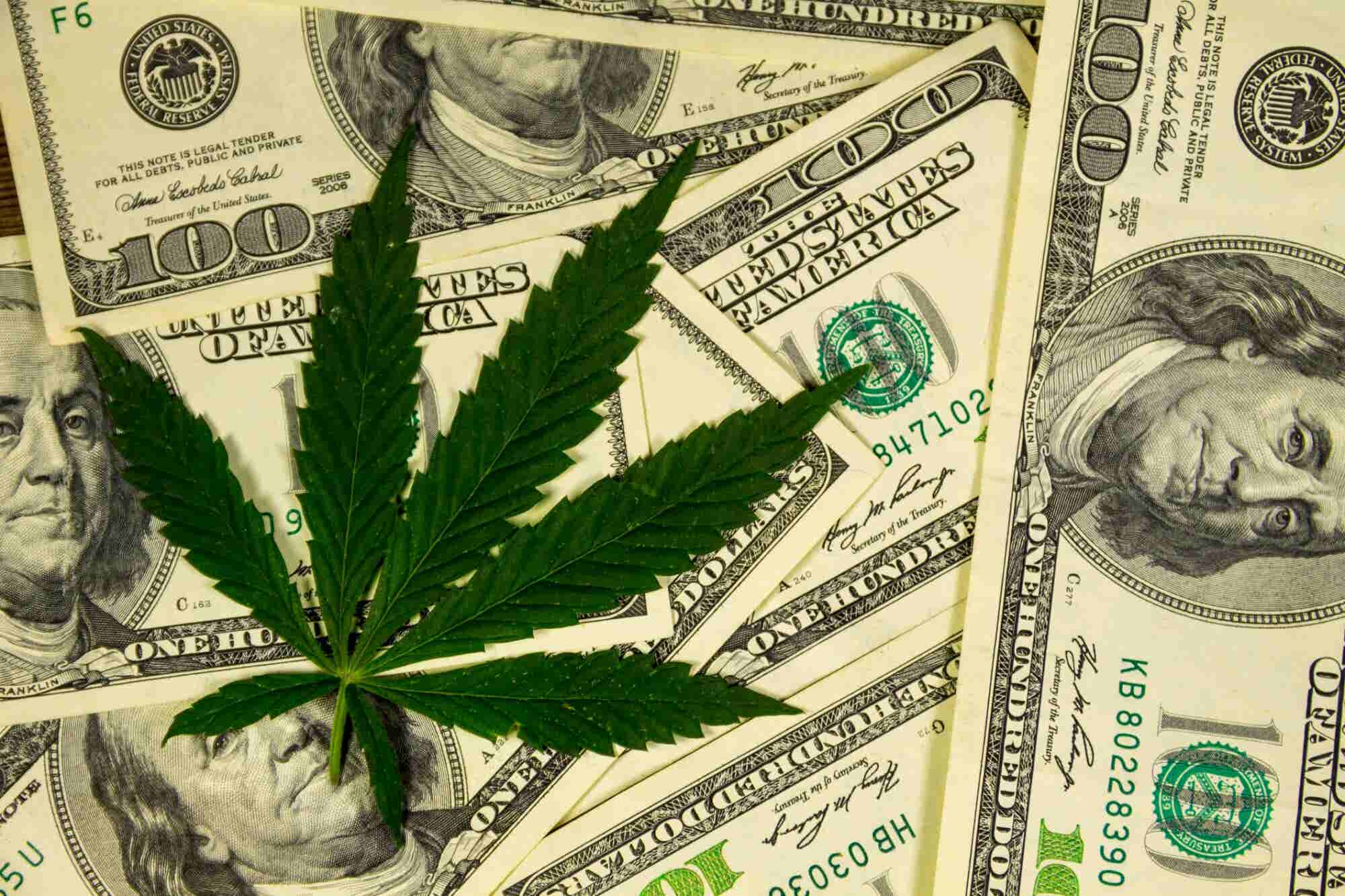 5 Proven Strategies For Winning Trust With Cannabis Consumers