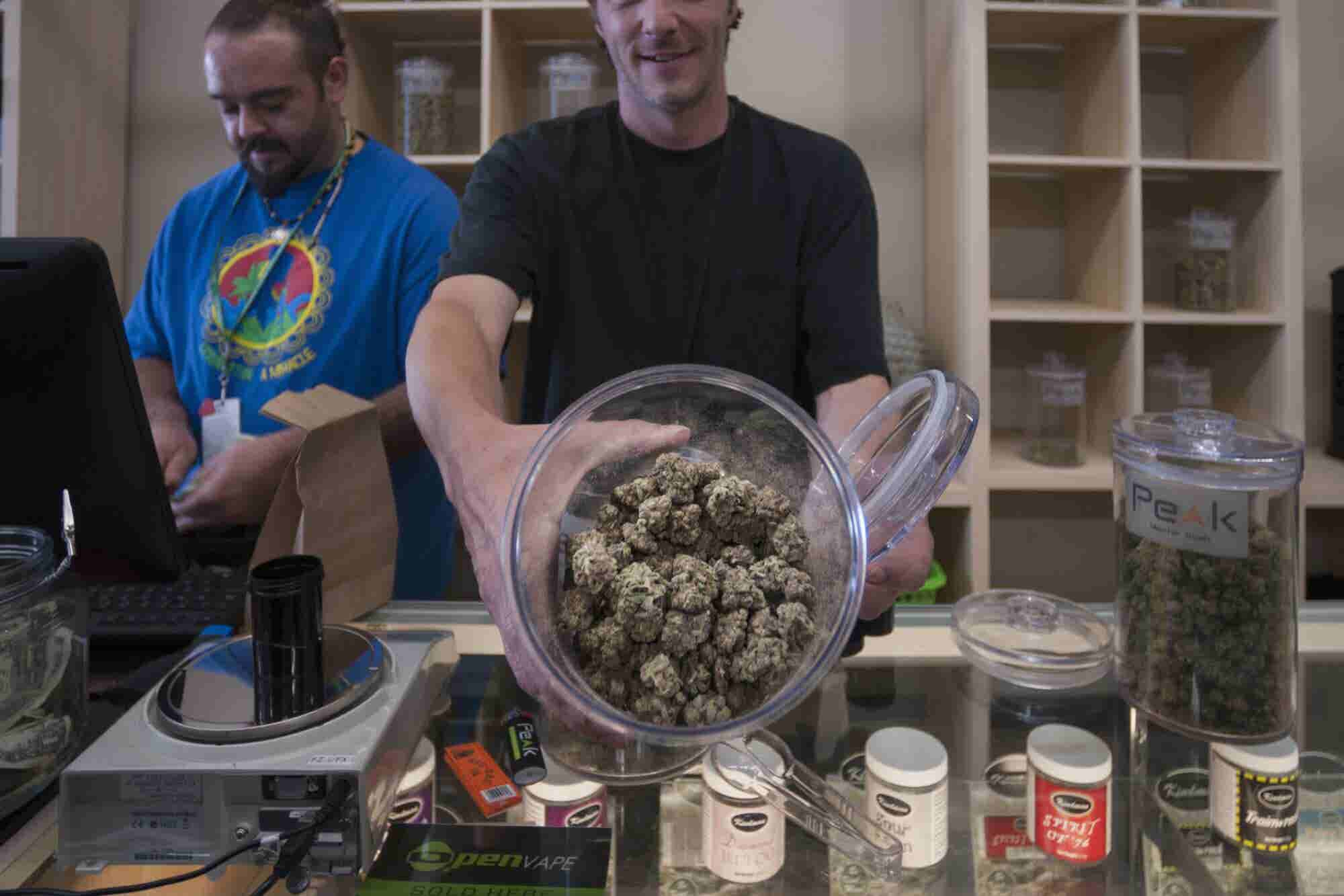 Report: Booming Cannabis Industry to More Than Double Employment Within a Year