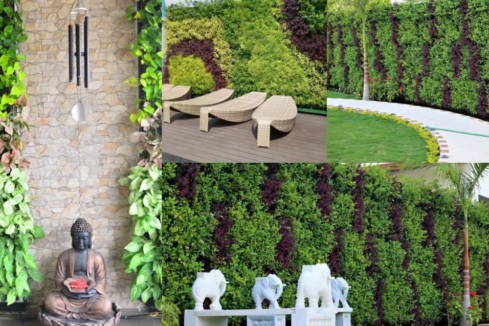 Vertical Gardens Are The New Fad in India. #4 Startups Acing The Wall