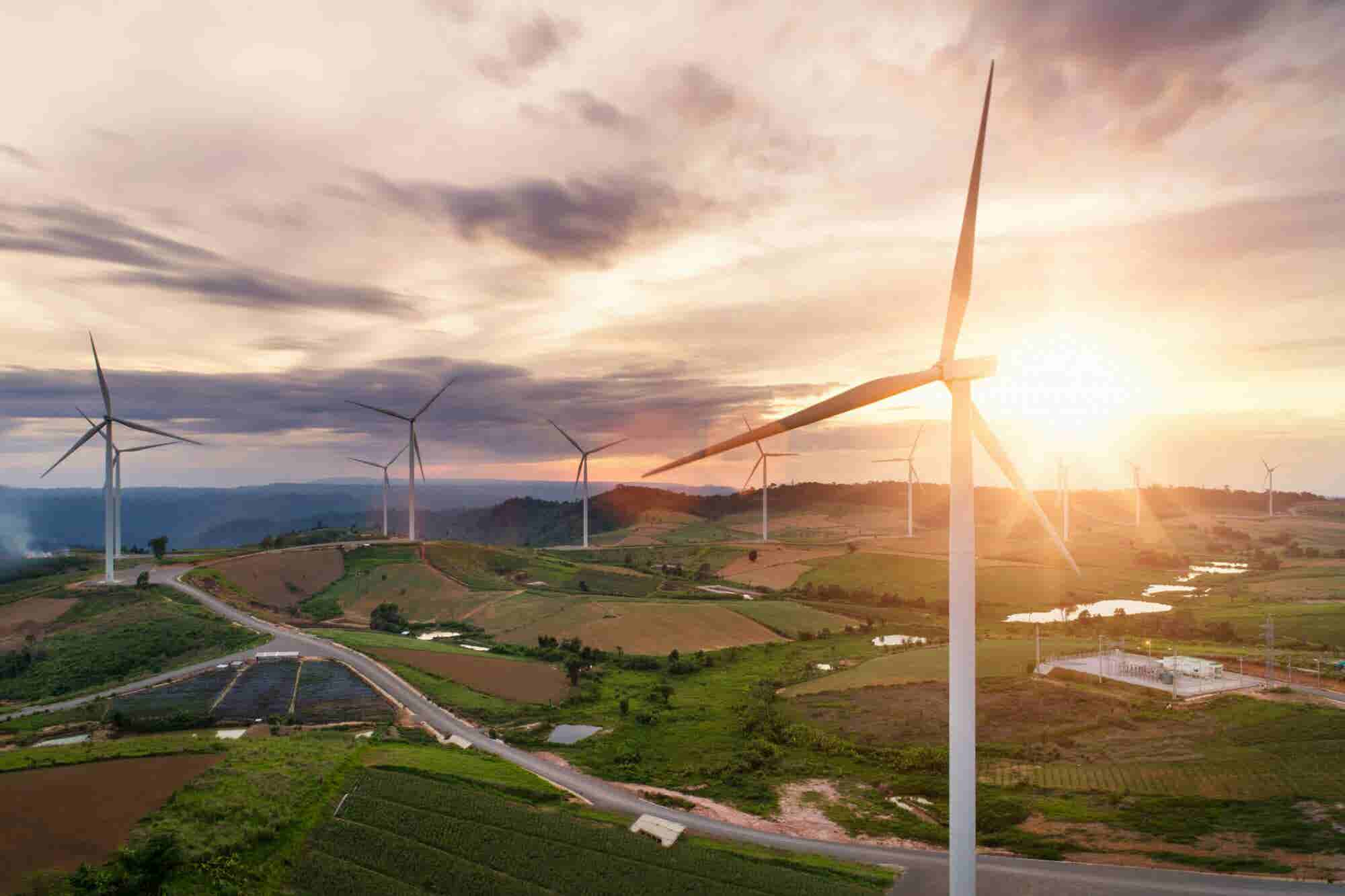 The Surprising Advantages Environmental Entrepreneurs Have Over Established Companies