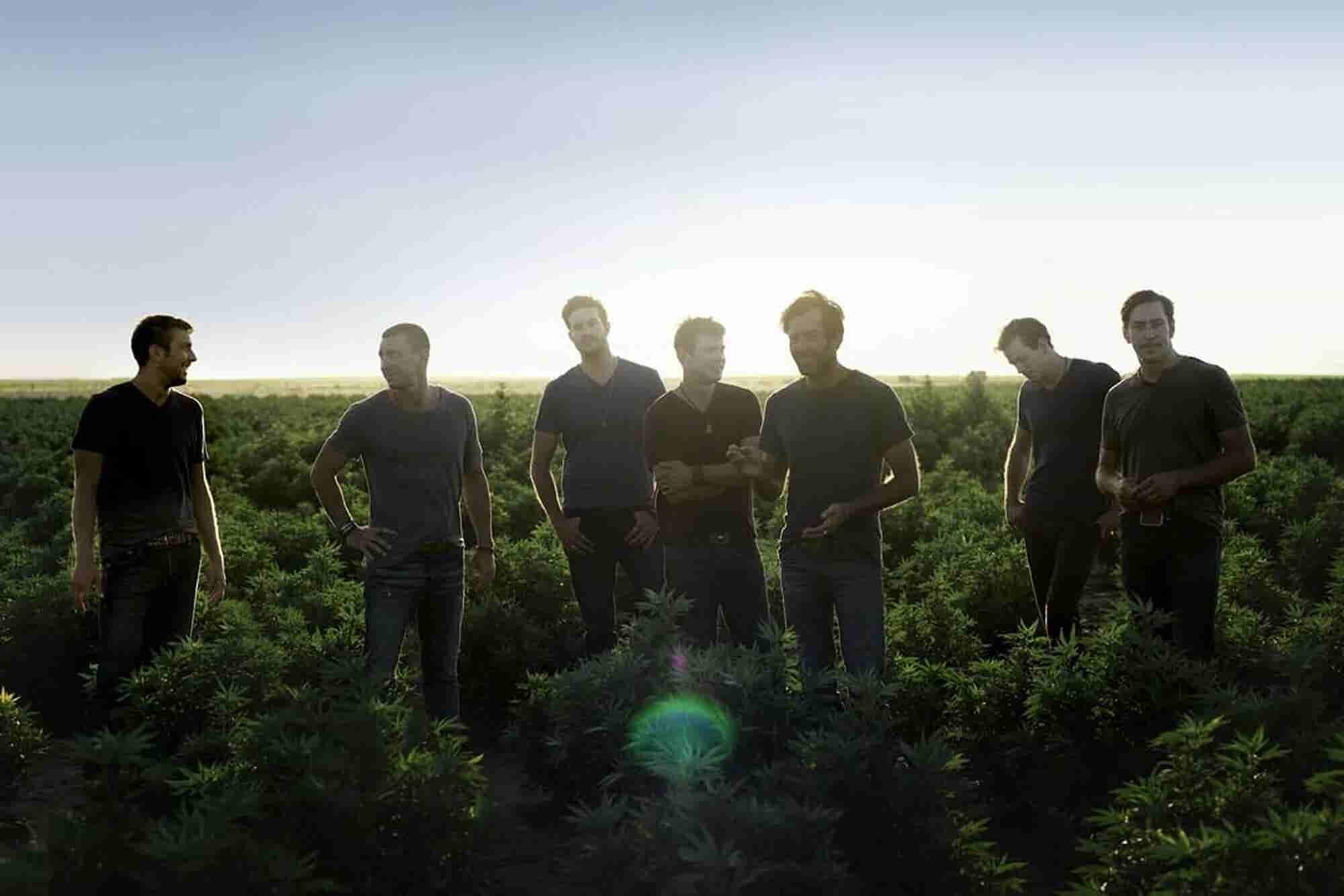 How 7 Brothers Became Pioneers in Hemp-Based CBD