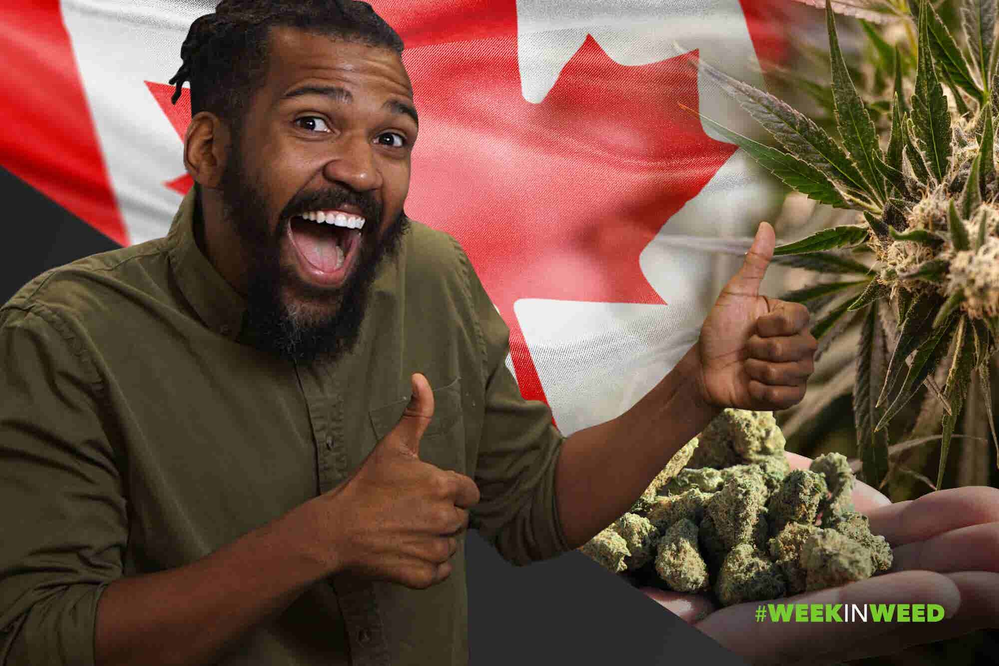 This Week in Weed: O, Cannabis!