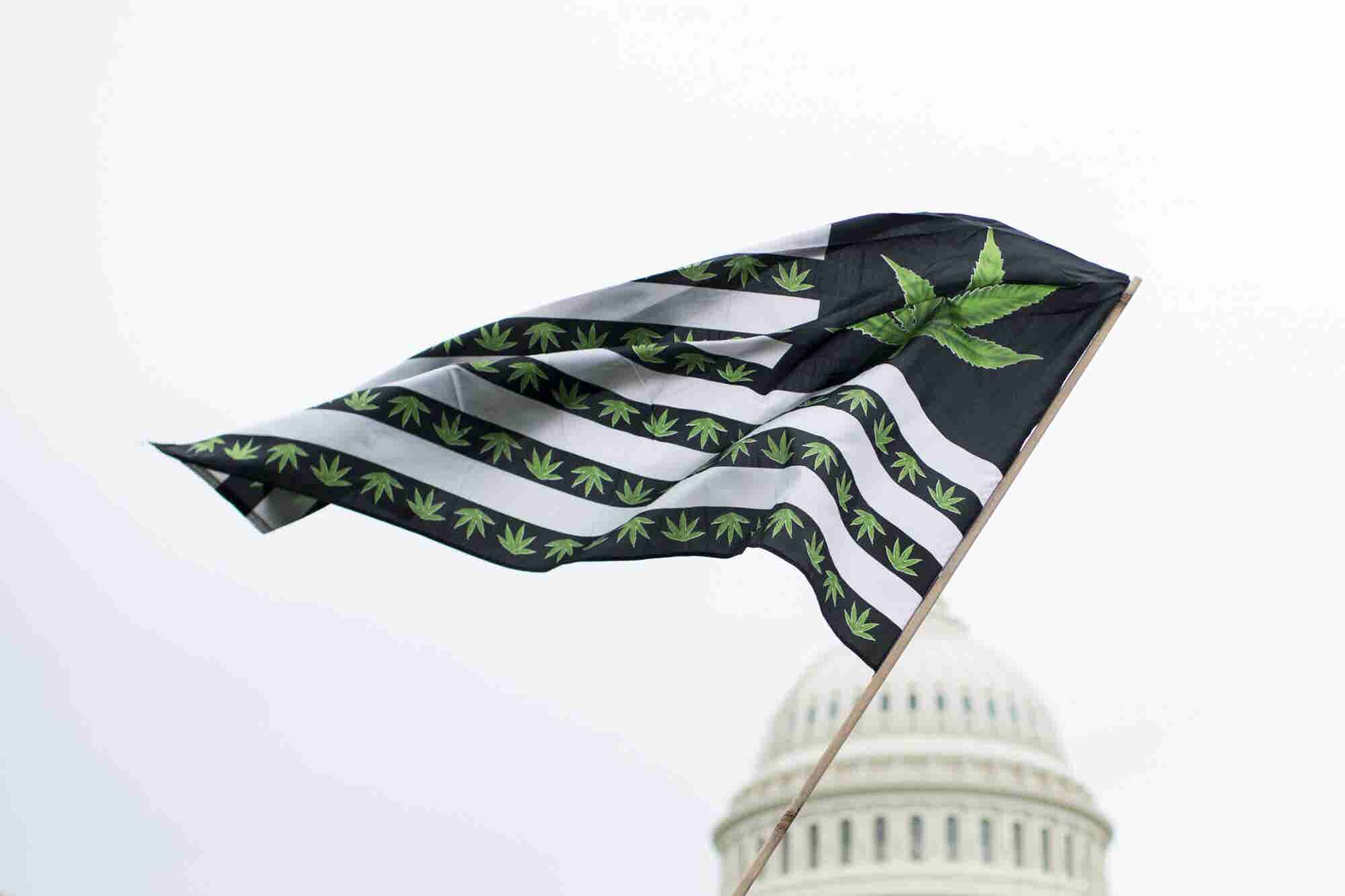 Latest Gallup Poll Finds a Big Majority of Americans Support Legal Marijuana
