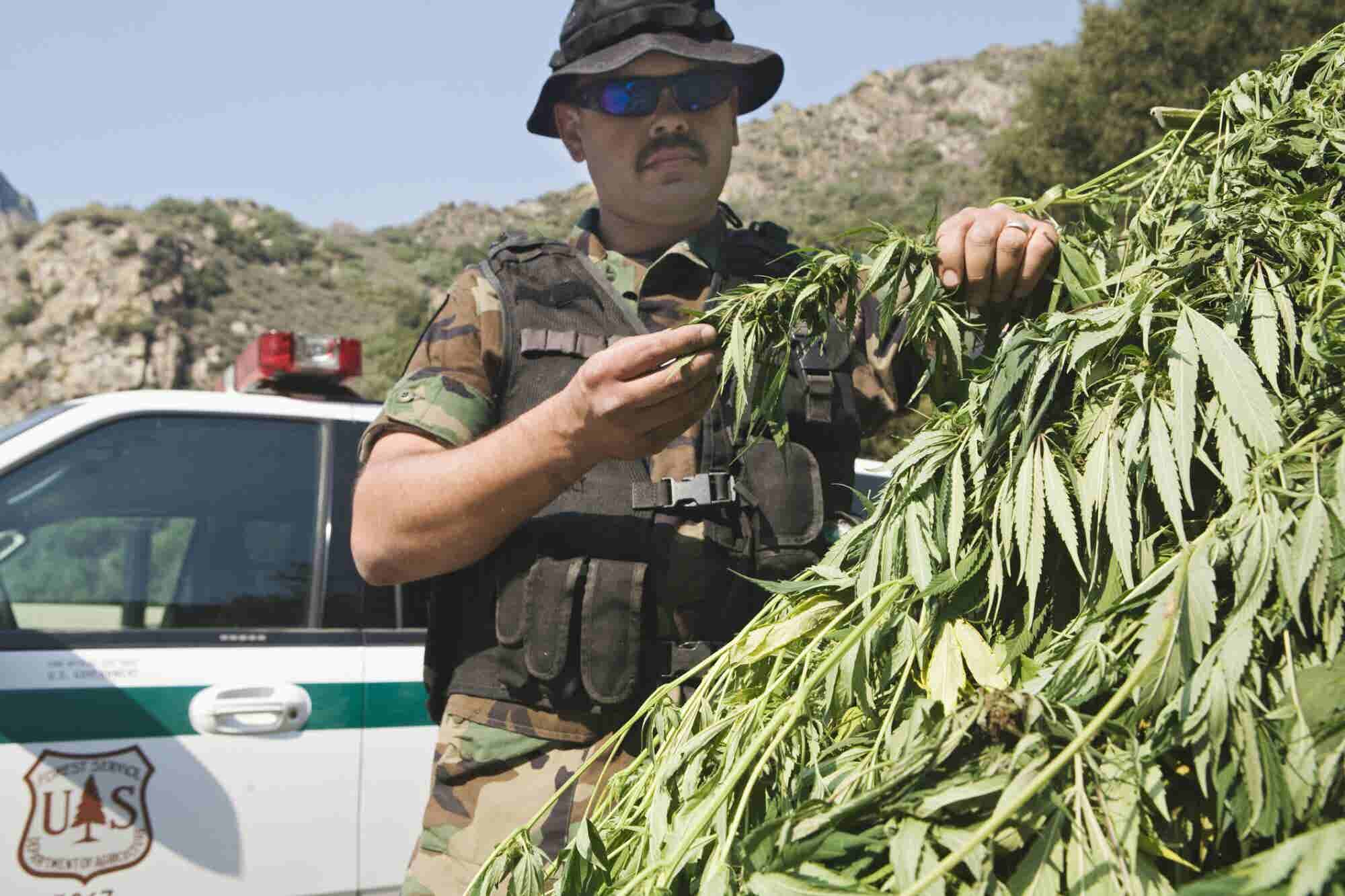 New California Law Makes it Easier to Erase Old Marijuana Convictions