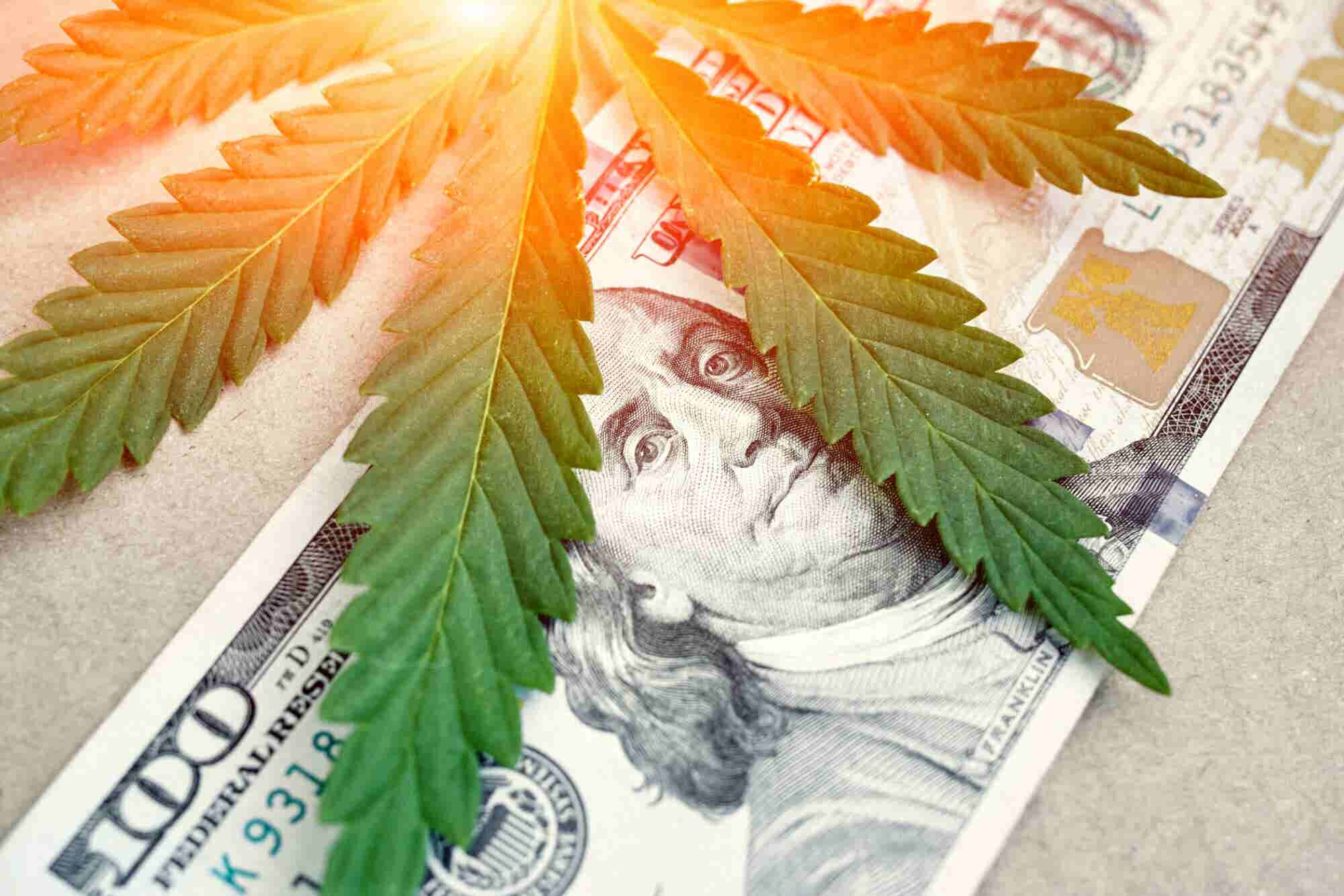 Planning to be Hempreneur? Here is What You Need to Know About the Trillion Dollar Industry