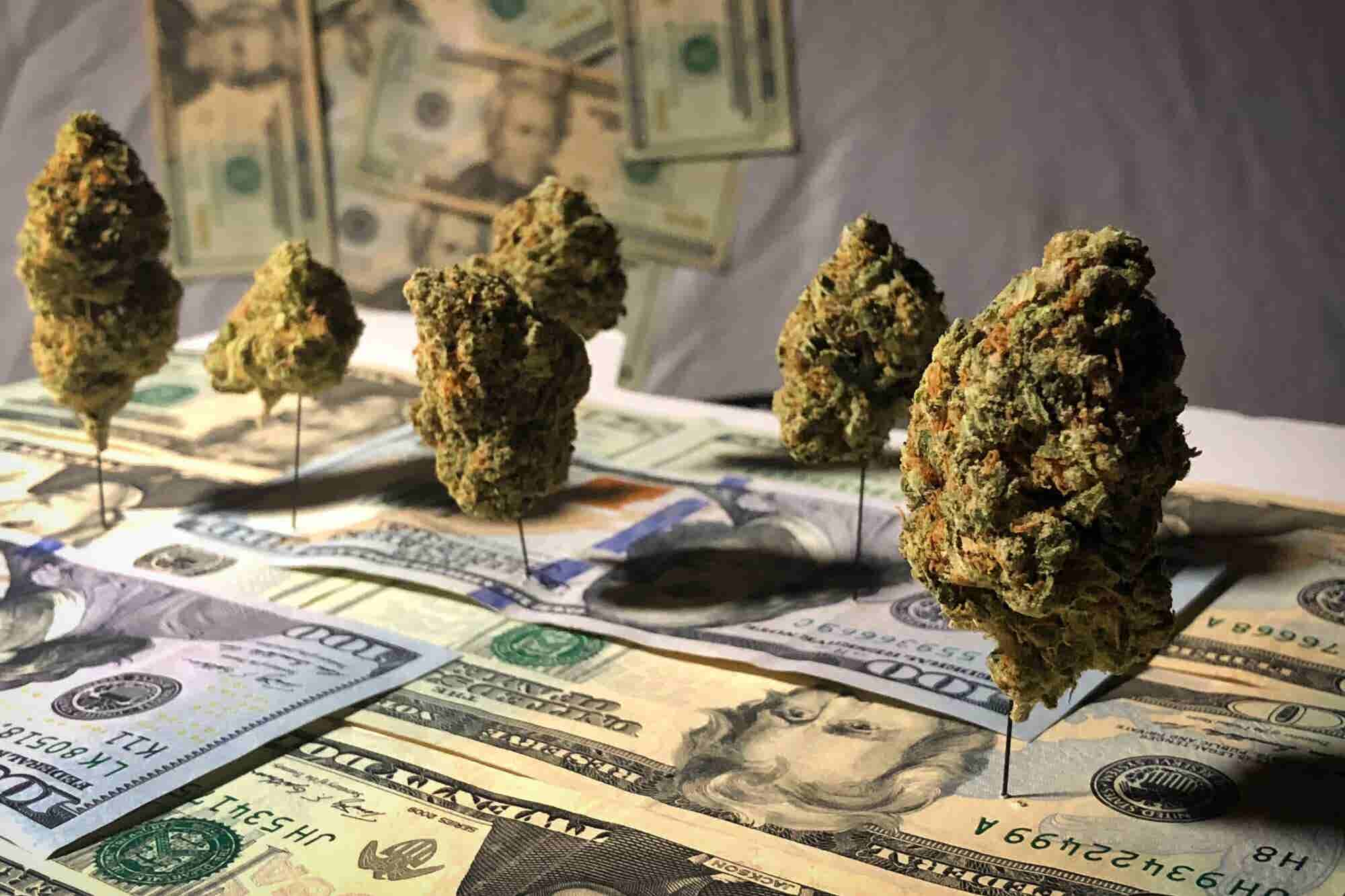 How to Not Get Squeezed Out by the Coming Cannabis Market Consolidation