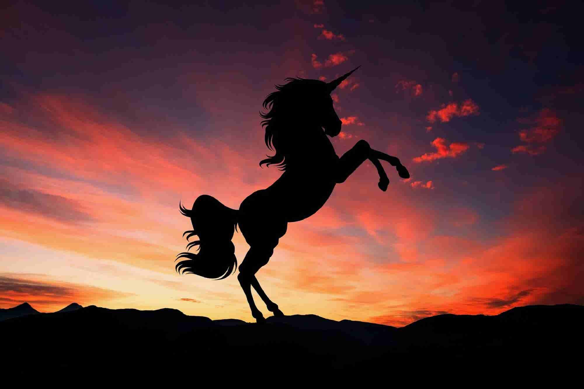 Say Ni Hao to China's Biggest Ever Unicorns