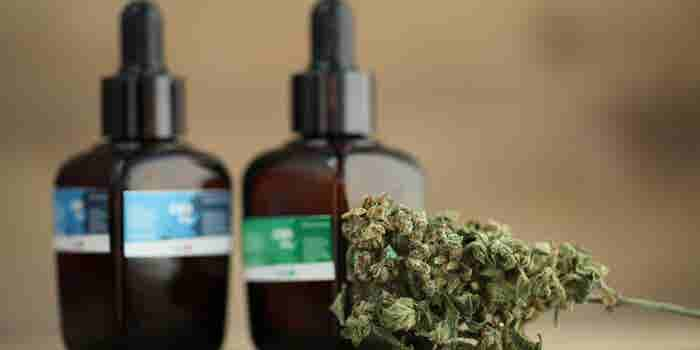 5 Keys to Choosing The Best CBD Distributor