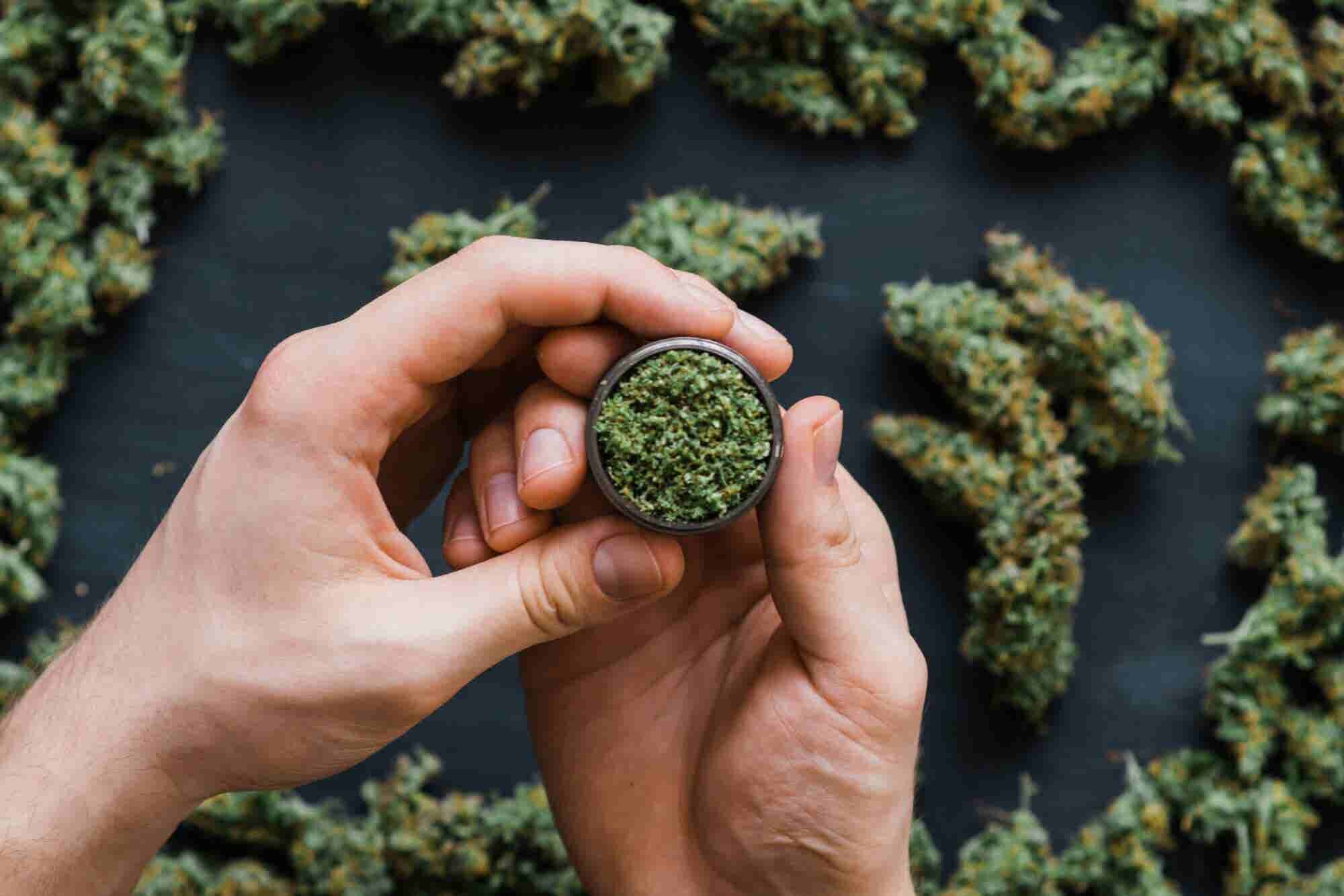 Your Cannabis Company Was Acquired. Now What?