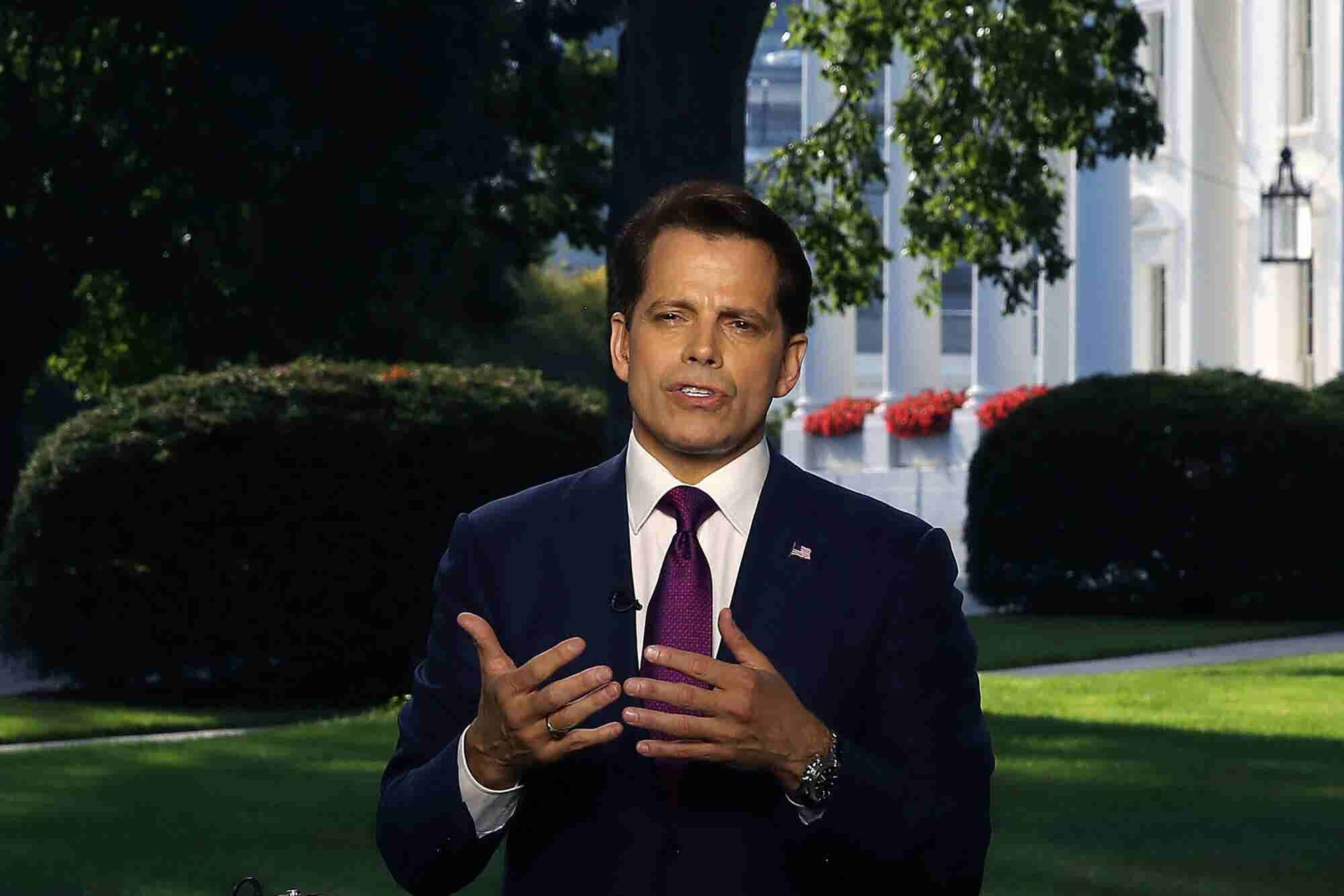 The Mooch: 'Trump Will Legalize Cannabis After the Midterms'
