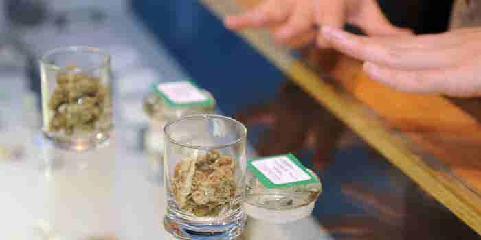 5 Steps for Dispensary Owners Thinking of Partnering With a Franchisor or Licensor