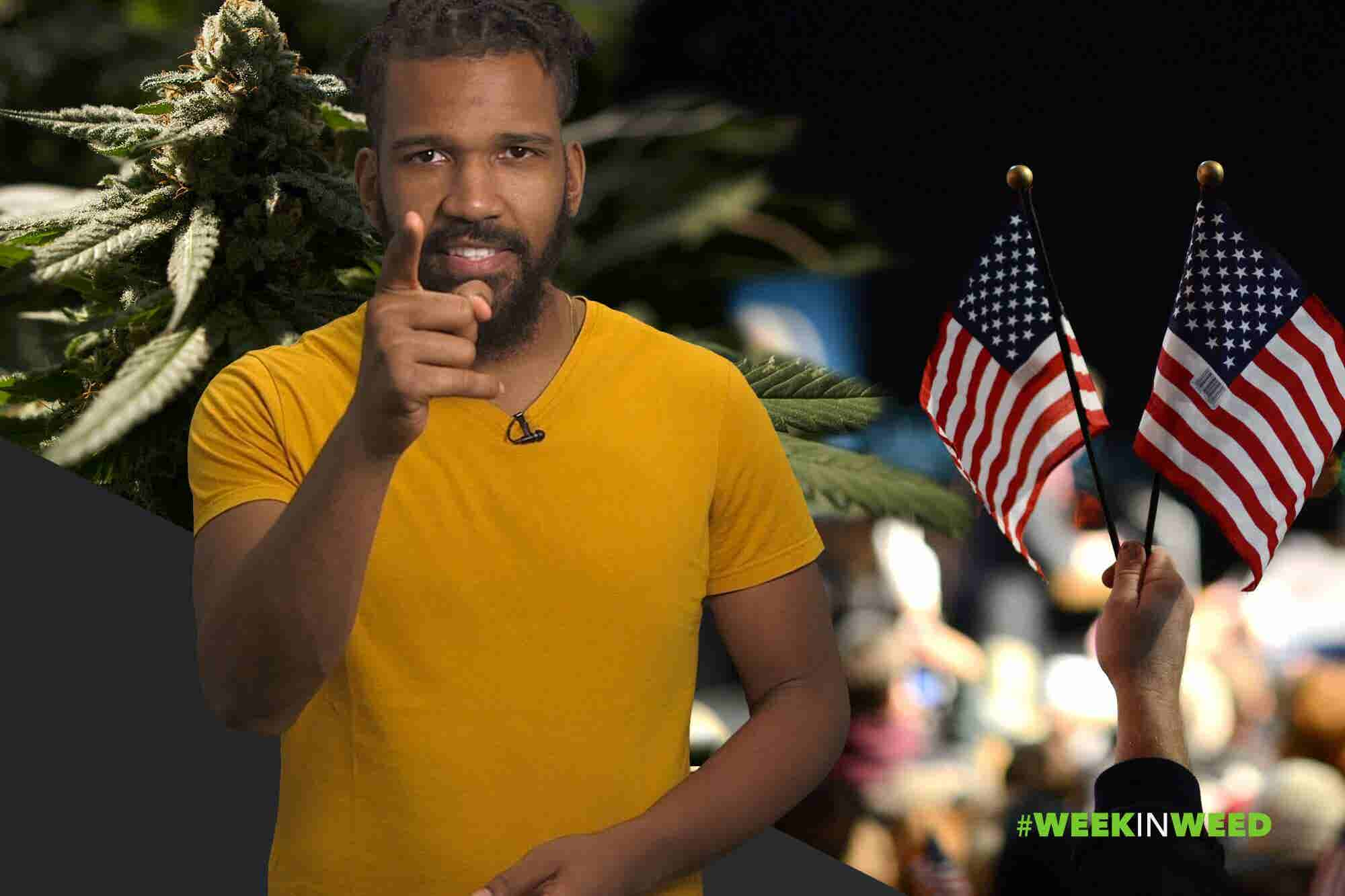 This Week in Weed: Americans Vote on Cannabis!