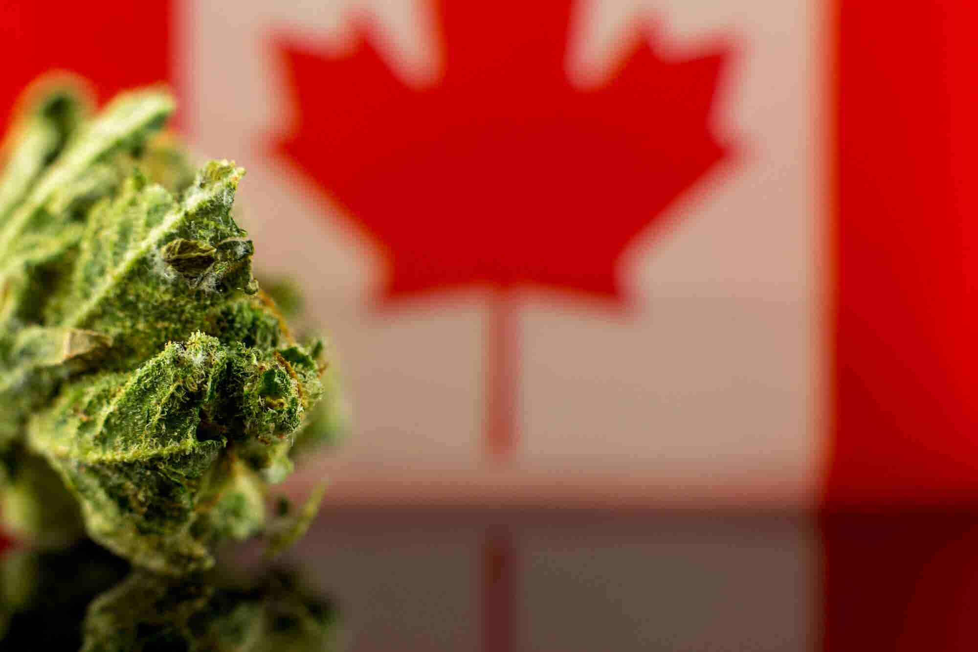 What American Tourists Need to Know About Canadian Marijuana Legalization