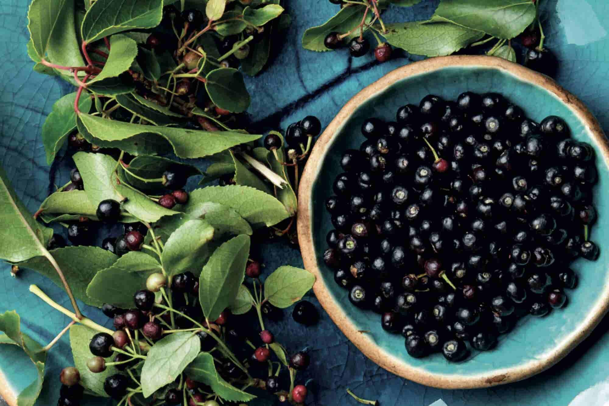 Especial: Cómo las berries mexicanas 'derrumbaron' el muro de Trump
