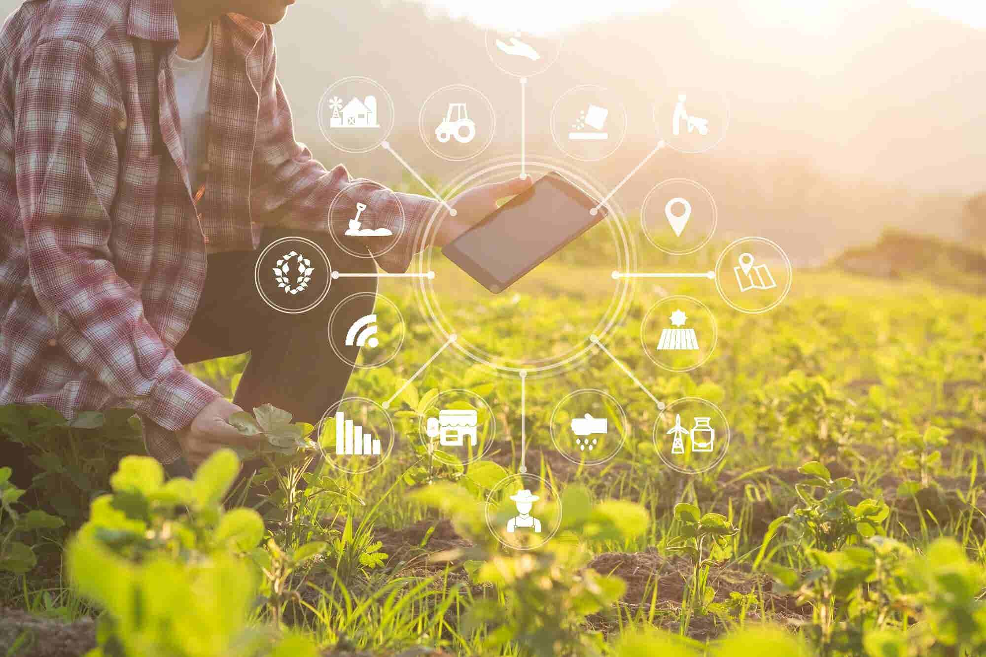 Four Agri-Tech Innovations in Asia Pacific that Are Changing the Game for Agriculture