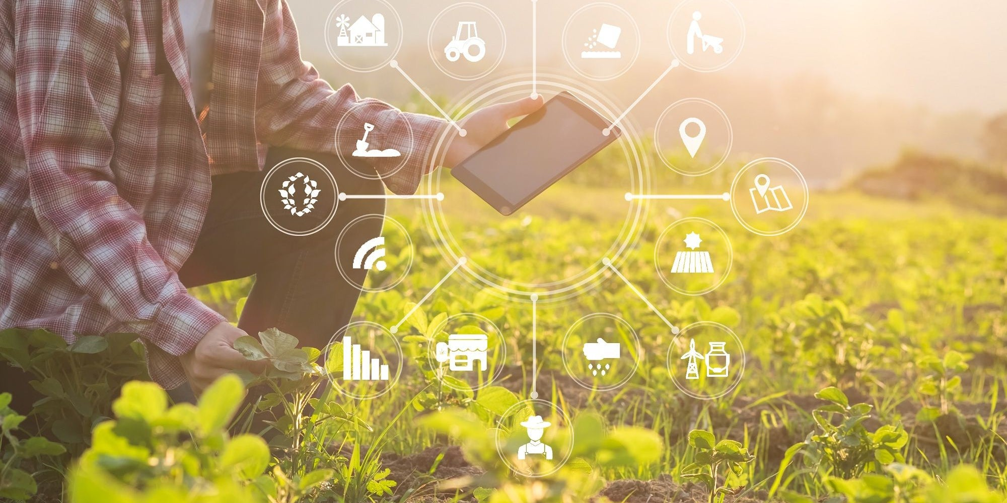 Five Trends to Watch out for in the Agritech Industry in 2019