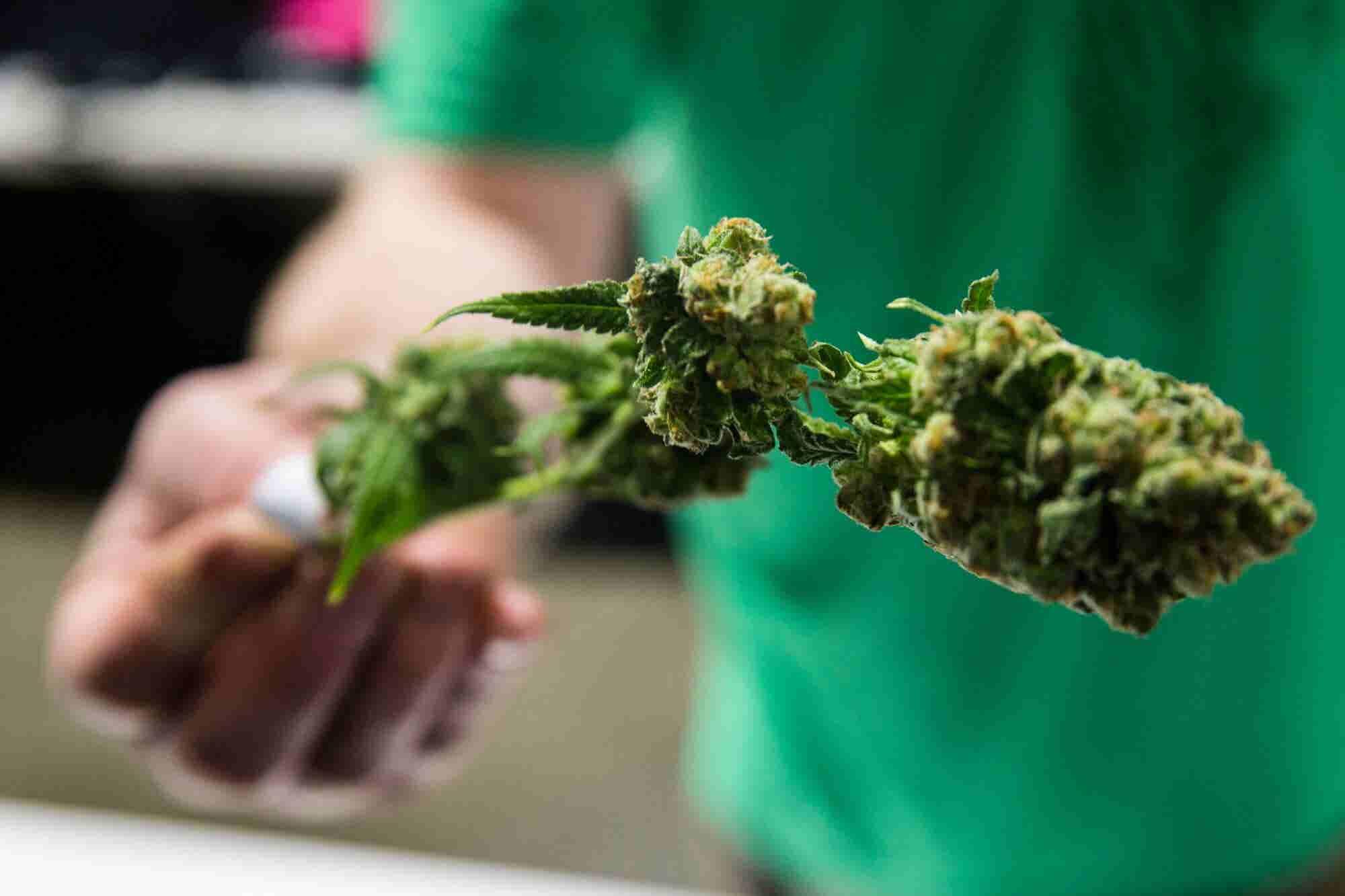 Marijuana in Maine: Slow Motion Crawl Toward Adult-Use Sales