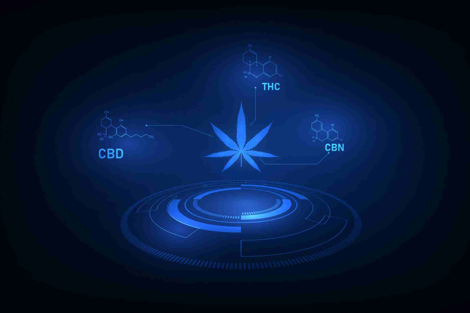 High Tech Is Powerfully Influencing the Future of the Cannabis Industr...