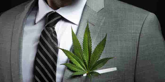 The Green Industry Goes White Collar