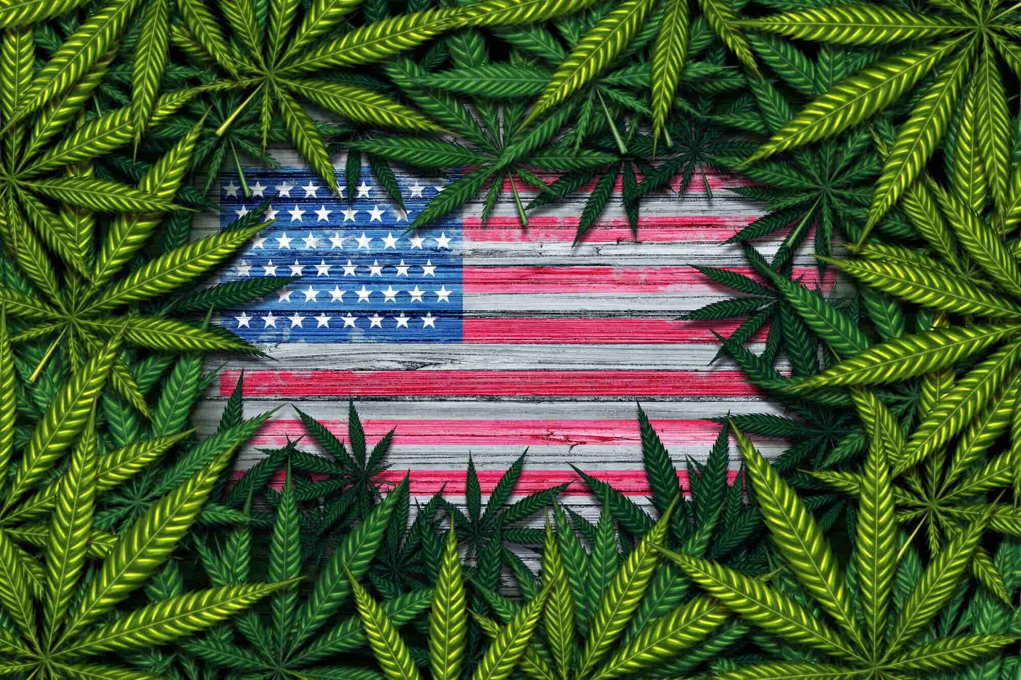 State of the Marijuana Union 2018