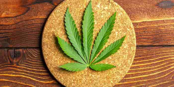 México podría convertirse en el mayor productor de cannabidiol gracias a la creación de la Cámara de la Industria del Cannabis