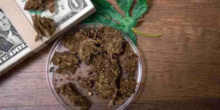 Oregon Marijuana Sales Soared 29 Percent in 2018. So Why Aren't More Entrepreneurs Happy?