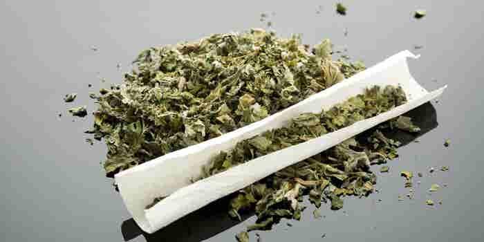 Altria, la fabricante de Marlboro, planea vender sus propios productos a base de cannabis