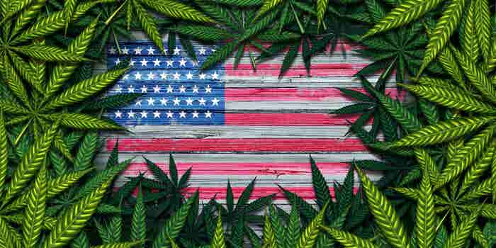 Hemp Legalization Clears House, Off to President for Final Approval