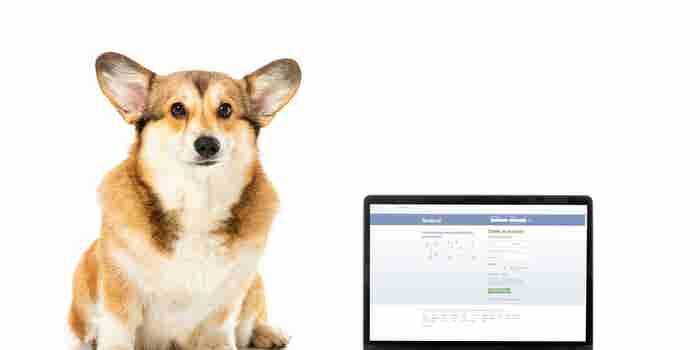 Facebook prohíbe la venta de mascotas y ganado en su plataforma