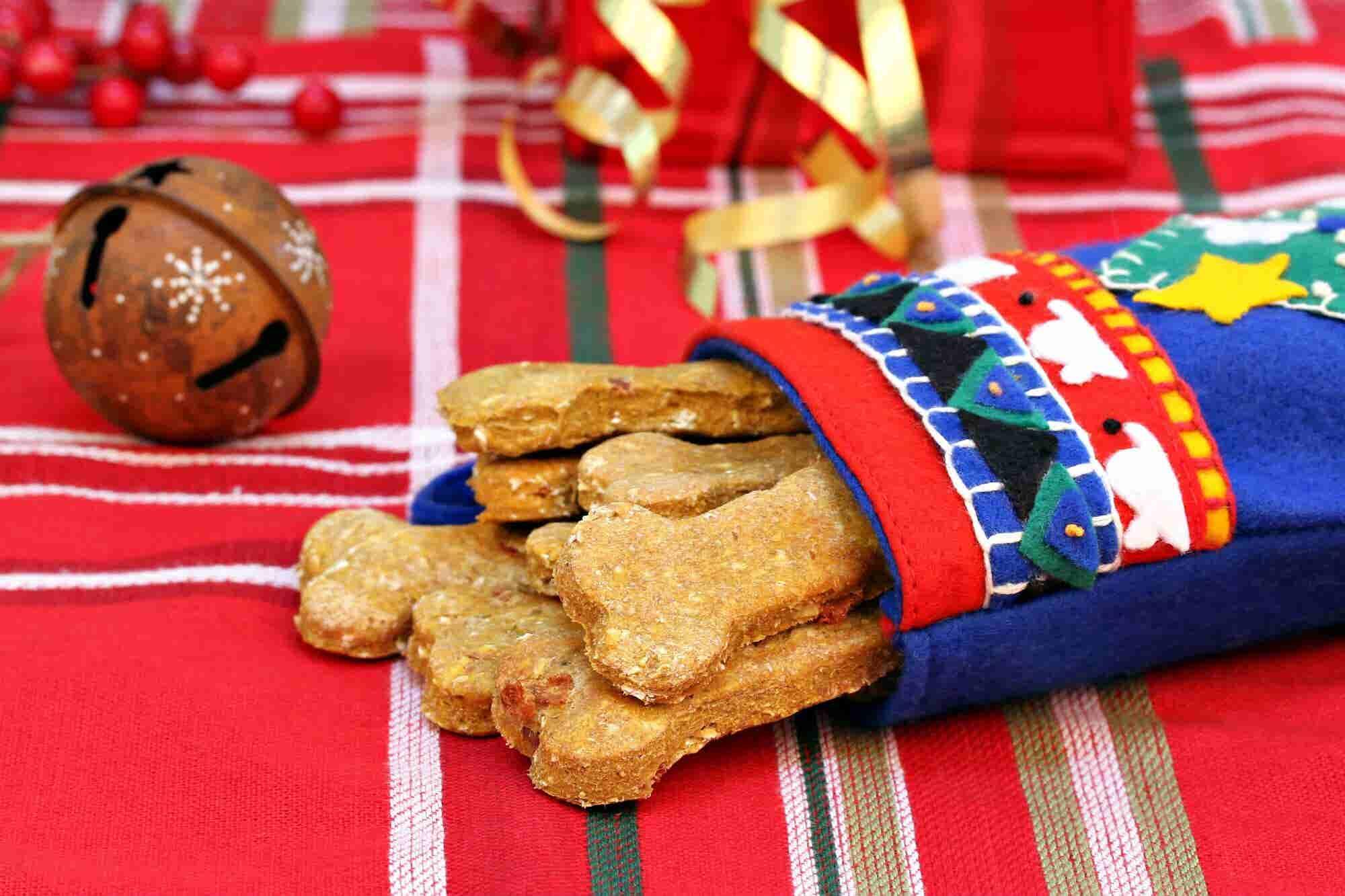 ¡Emprende con cenas de fin de año para mascotas!