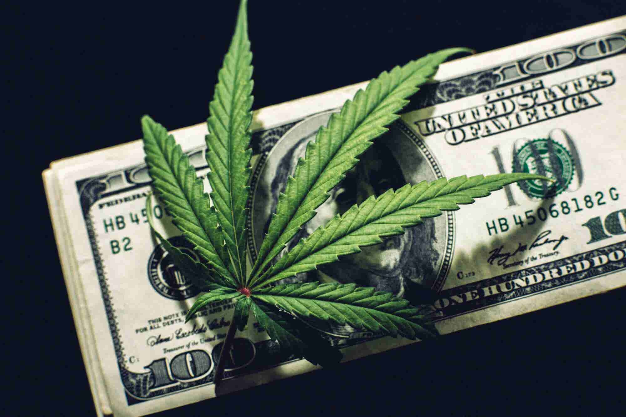 The Cannabis M&A Boom Is Looking Like the Dot.com Boom. Here's How to...